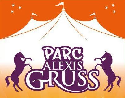 OFFRE SPÉCIALE : La féerie du cirque à prix cassés !