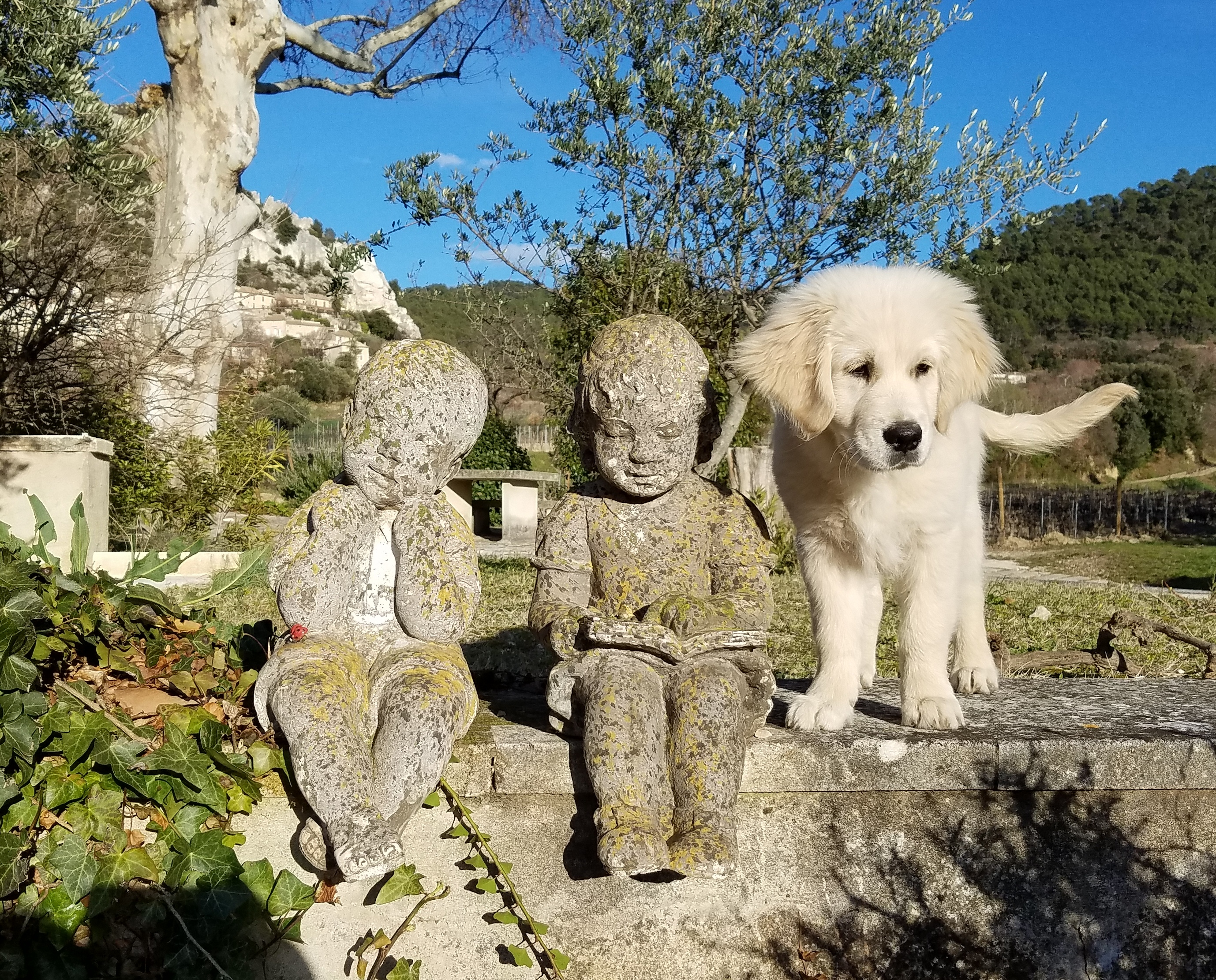 The three children of the Domaine de Cabasse