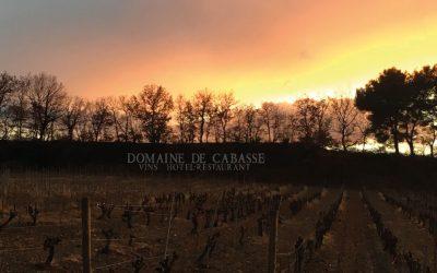 Ein schöner Sonnenuntergang auf dem Weinberg von Domaine de Cabasse